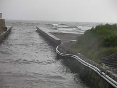 yasashi river