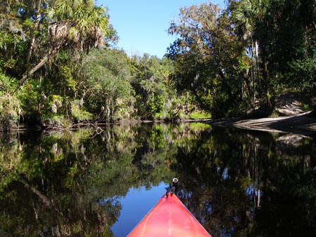 Kayaking on the Manatee River in FL