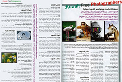 Kuwait Free Photographers (Najwa Marafie - Free Photographer) Tags: free photographers mohammed kuwait 2008 muna nada mohamed jassim najwa najeeba abdeen alanood marafie alotaibi alostath ashknani alderbas alyaqaza