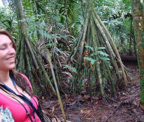 Visita Estación La Selva, OET, Sarapiquí, Costa Rica