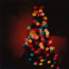 (jeffreywithtwof's) Tags: christmas color tree mamiya film jeff mediumformat circle real polaroid lights holidays fuji bokeh circles fake instant hutton rb67 squareish fp100c jeffhutton ipreferwhitelights nofiltersoractionshere jeffhuttonphotography jeffreyhutton