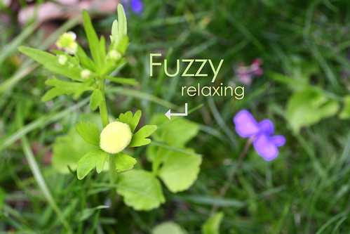 Fuzzy relaxing