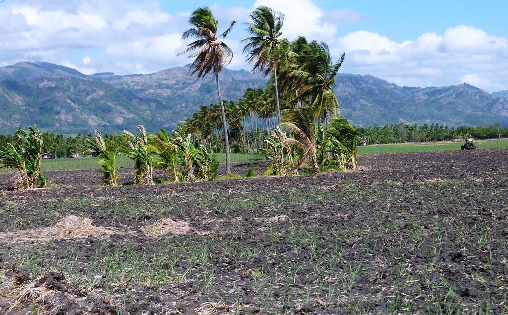 Negros-Dumaguete-Mabinay-Bacolod (19)