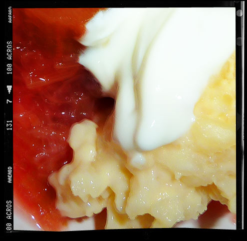 Vanilla risotto with poached rhubarb