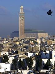 Hassan II mosque (Ren Mouton) Tags: religious king secondchance dove islam mosque morocco maroc casablanca marokko duif moskee hassanii koning hassaniimosque  religieus flickrchallengegroup   michelpinseau hassaniimoskee eddarelbeida
