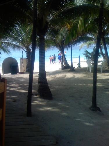 From the beach bar.