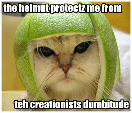 the-helmut-protectz-me-from-teh-creationists-dumbitude