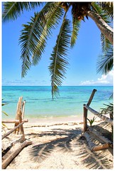And there was paradise - Yasawa islands - Fiji (kryyslee) Tags: world pictures ocean voyage trip travel blue sea mer color tree beach colors fiji canon de island photography eos gold islands coast photo paradise foto image photos coconut pics couleurs picture ile images du adventure coco palmtree round around christophe monde 2008 backpacker amateur pict plage autour couleur paradis palmier noix iles aventure fidji yasawa 50d 400d kryyslee christophepaquignon paquignon