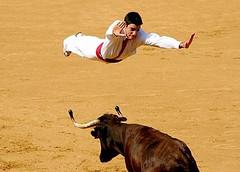 over the bull