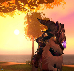 ::Isle Of Quel Danas:: (~Wynter~) Tags: sunset horse game wow screenshot blood warcraft elf online beast hunter windrider talbuk