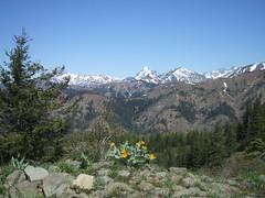 Mt. Stuart from Iron Bear