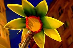 Flor en hotel Riazor (José Luis López Vázquez) Tags: españa flores spain nikon coruña d70 jose amarillo luis lopez josé 4600 luís batalla vazquez f601 vázquez lópez joseluislopezvazquez joséluislópezvázquez