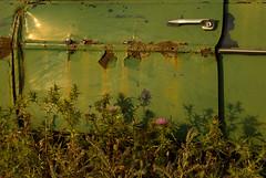 Abandoned Mercedes 3 (Shelley'73) Tags: mercedes rusty santorini thistles aficionados imerovigli finikia cmwdgreen aficinonados