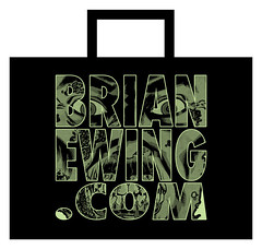 San Diego Comic Con exclusive bag.1.jpg