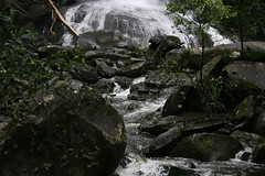 Oz3 268 Erskine Falls (Gillian in Brussels) Tags: nature coast waterfall nationalpark australia shore greatoceanroad erskinefalls greatotwaynationalpark