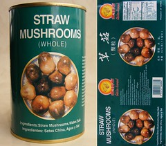 Can of Straw Mushrooms (FotoosVanRobin) Tags: can blik  strawmushrooms strochampignons setaschina caogu asianingredients aziatischeingredienten aziatischeingredientennl aziatischeingredinten