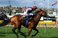 IMG_1414time thief (Nikkichick88) Tags: horses melbourne august victoria racing winner horseracing 27 mooneevalley
