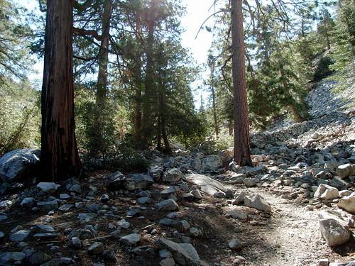 Cucamonga Peak via Icehouse Canyon