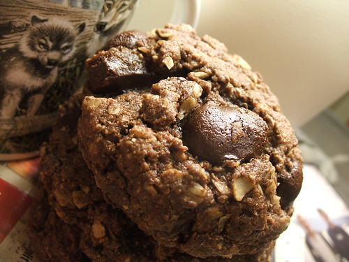 chocolate fudgey oatmeal cookies1