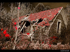 Halloween Mood (Mez, Kornl (mostly away)) Tags: old autumn roof red sky brown house detail fall abandoned broken leaves night forest dark scary woods ruins moody details sharp tiles collapsed eveing aplusphoto