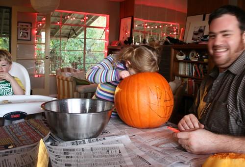 sniffing pumpkin guts