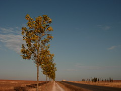 El Camino de Regreso (Famovil) Tags: walking spain caminodesantiago pennsula caminatas santiagodelteide