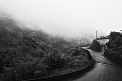 - Dust in the wind. (Nien-Yi Ho ) Tags: monochrome taiwan            canoneos400d 2008col 34 nienyihophotography