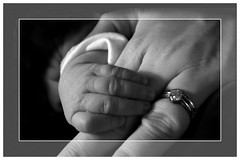Mummy and Me (jo92photos) Tags: uk blackandwhite baby white black macro love fdsflickrtoys infant grace ring newborn s7000 weddingring maternal bonding grandaughter babyhands motherandbaby diamondring fujis7000 tinyhands allrightsreserved myfuji jo92photos maternalbonding