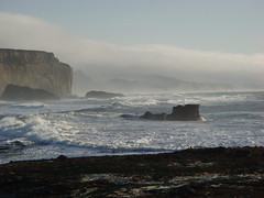 MartinsBeach_2007-055 (Martins Beach, California, United States) Photo