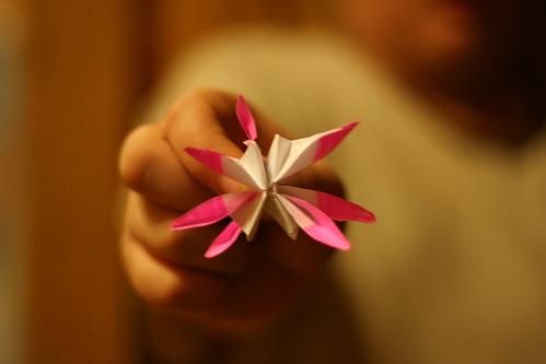 hayden's origami