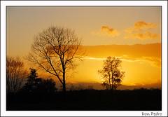 sunset (Don Pedro de Carrion de los Condes !) Tags: trees sunset sky orange zonsondergang bomen herfst lucht reds nijkerk donpedro endofday leciel silhouetten slichtenhorst lecieldautomne
