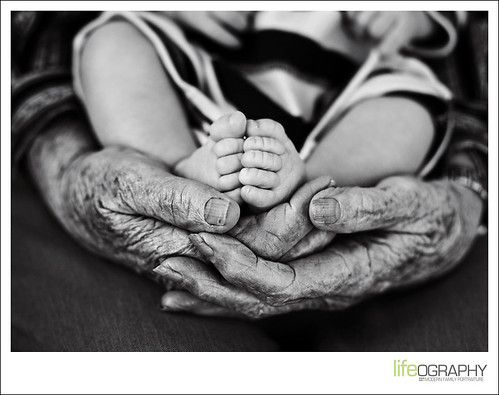 in great grandma's hands / lifeography®