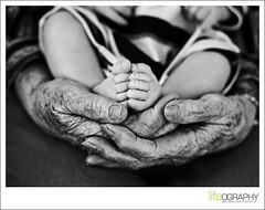 in great grandma's hands (lifeography) Tags: grandma baby hands newborn generations virginiabeach pf hamptonroads wwwlifeographercom epiceditsselection wwwlifeographercomblog lifeography