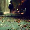 Dancer in the Dark (Karen.Strolia) Tags: fav50 10 25 100 50 75 fav10 fav25 fav100 artlibre afterdinnerstroll fav75 artlibres littlepastdusk