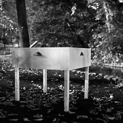 oasis.. (F_blue) Tags: tokyo fuji hasselblad 500cm neopan100acros planart 善福寺公園 トロールの森 c8028 zempukujipark fblue2008 丸山芳子 yoshikomaruyama trollsinthepark2008