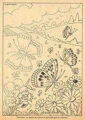 papillonscolor