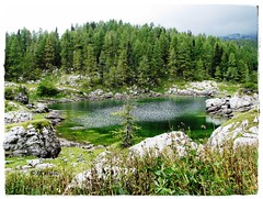 The first of seven (forestsoul) Tags: lake mountains nature slovenia potofgold jezero blueribbonwinner planina narava abigfave platinumphoto anawesomeshot landscapesdreams forestsoul