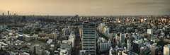 Tokyo 1227 (tokyoform) Tags: city urban panorama japan skyline architecture 350d japanese tokyo asia cityscape skyscrapers ciudad tquio stadt  bleak  japo japon ville tokio stadtbild paisajeurbano japn    japonya  nhtbn paysageurbain jongkind           chrisjongkind   tokyoform