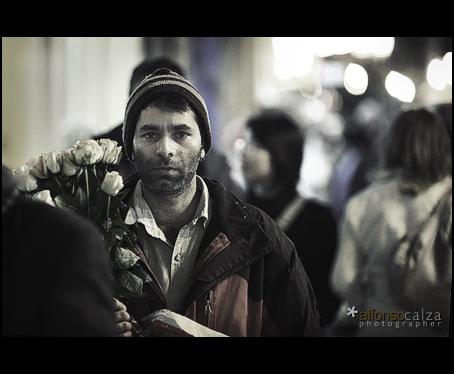 El Portador de Rosas