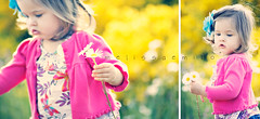 { D A I S I E S } (MelissaEmikoPhoto) Tags: pink flowers light summer sun cute girl fun toddler diptych natural action bokeh daughter daisy