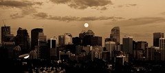 Calgary Skyline (Surrealplaces) Tags: park urban canada calgary alberta nosehillpark