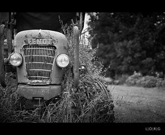 Overgrown (L|O|R|G) Tags: bw tractor film overgrown rural 35mm analogue fendt ilfordxp2super400 smcpm50mmf17 ricohkr10x
