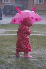 Rainy Day moosh