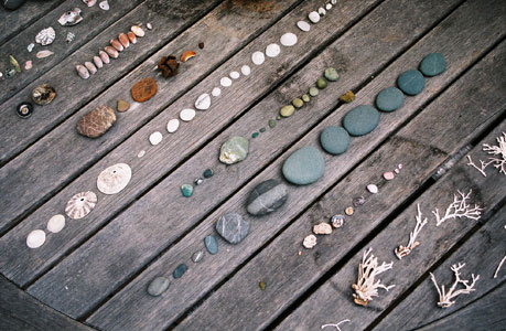 sea ranch: my collections