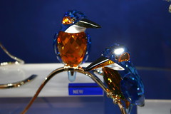 Eisvgel (eckiblues) Tags: gallery swarovsky eisvogel mywinners