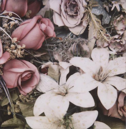fadedflowers@perelachaise