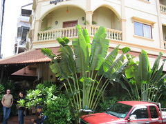 Review of Anise Hotel, Phnom Penh, Cambodia