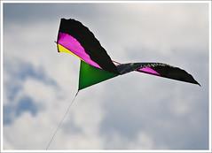 Stillwater Kites (hz536n/George Thomas) Tags: pink blue summer sky kite black green oklahoma yellow stillwater 2008 canon30d canonef70200mmf4lusm