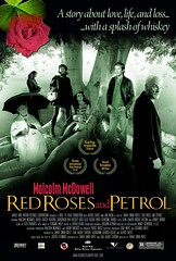 red_roses_and_petrol_xlg