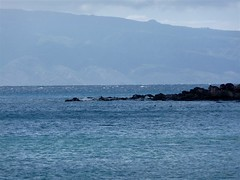 Maui (Devrah) Tags: ocean hawaii maui kapalua